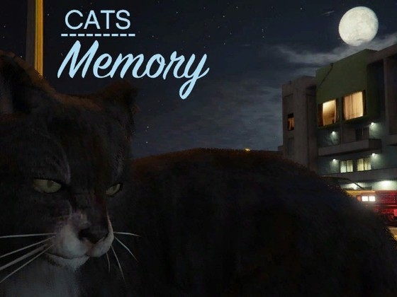 Cats: Memory