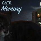 Cats: Memory