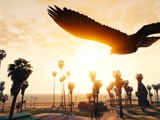 Flight of the hawk 2