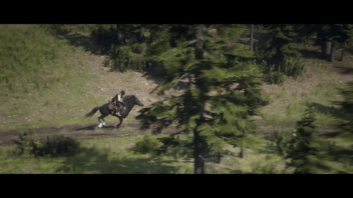 Red Dead Redemption 2_Storymodus_Screenshot (28)