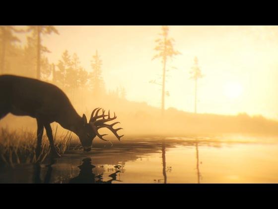 Red Dead Redemption 2_Storymodus_Screenshot (15)